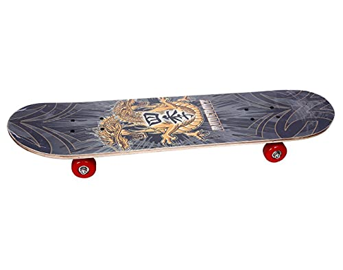 Portible Skateboards Complete for Beginners Kids Boys Girls Adults Youth-Standard with Deck Skateboards, Long-Board Skate Board (Pack of 1).