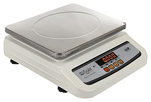 iScale i-02 30kg x 1g Digital Table Top Weighing Scale with Front and Back Display Pan for Retail Shops and Commercial Purposes (10x12 inches, Silver)