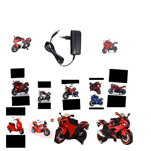 Royal Toys 12v Charger for Kids Ride on Toys, 12 Volt Battery Charger for R1 Bike R3 ninza All Type Bike Children Powered Ride on Bike Battery Power Adapter-Black