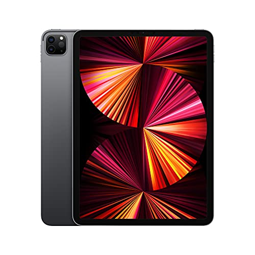 2021 Apple iPadPro with Apple M1 chip (11-inch/27.96 cm, Wi-Fi, 256GB) - Space Grey (3rd Generation)
