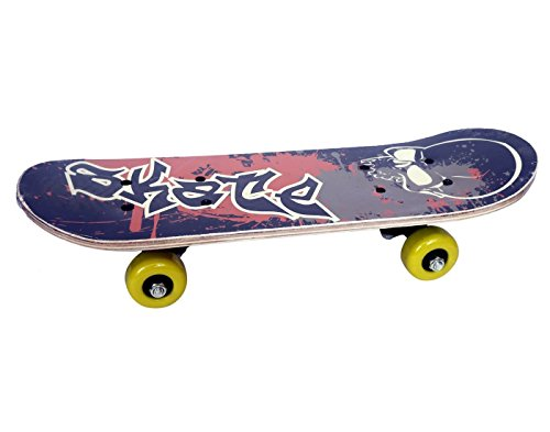 ALOKRUPSWAM Skateboard, Beginner Skateboards, Complete Pro Skateboard with A Repair Kit for Kids/Boys/Girls/Youth/Adults, Canadian Maple Double Kick Skateboard for Outdoor Sports