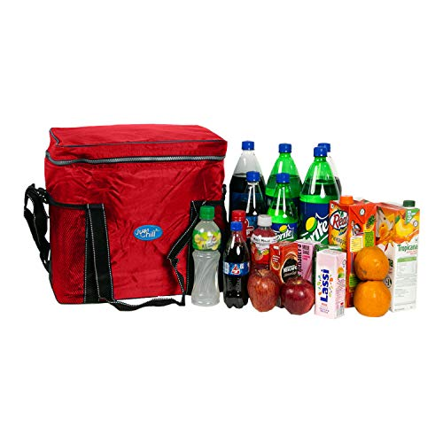 PARCO Just Chill Collapsible Cooler & Warmer/Thermal Insulated Portable Bag for Lunch,Grocery Shopping, Travel, Camping and Road Trips
