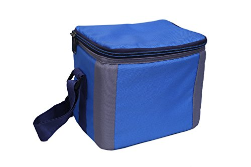 BagsRUs Polyester 6.7 L Royal Blue Portable Cooler Bag with Ice Pack
