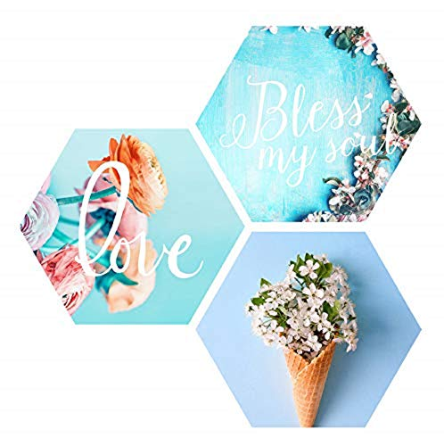 SAF Love Blessing Soul with Preety Flower and Leaf in Cone Pot 3 Piece of Hexagon UV Textured Multi-Effect Self adheshive Painting 17 Inch X 17 Inch SANFHX142